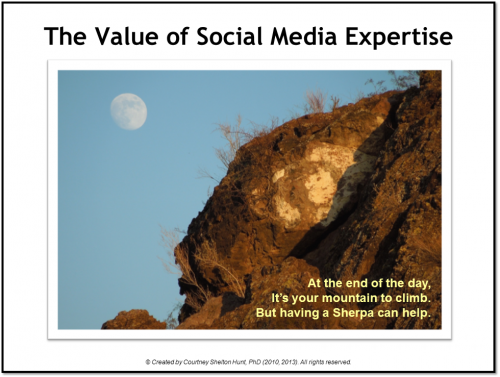 The Value of Social Media Expertise