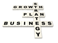 Business Strategy and Development